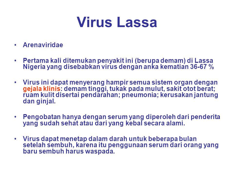Virus Lassa Arenaviridae Pertama kali ditemukan penyakit ini (berupa demam) di Lassa Nigeria yang disebabkan virus dengan anka kematian 36-67 % Virus