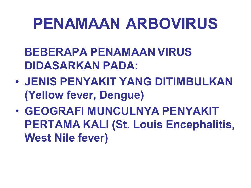 PENAMAAN ARBOVIRUS BEBERAPA PENAMAAN VIRUS DIDASARKAN PADA: JENIS PENYAKIT YANG DITIMBULKAN (Yellow fever, Dengue) GEOGRAFI MUNCULNYA PENYAKIT PERTAMA