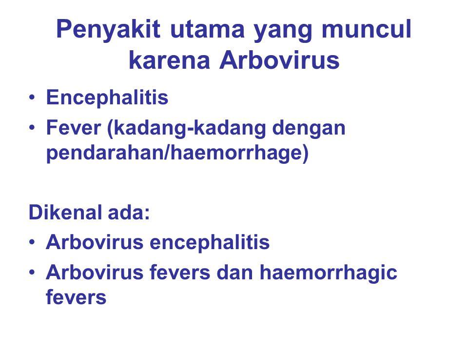 Penyakit utama yang muncul karena Arbovirus Encephalitis Fever (kadang-kadang dengan pendarahan/haemorrhage) Dikenal ada: Arbovirus encephalitis Arbov