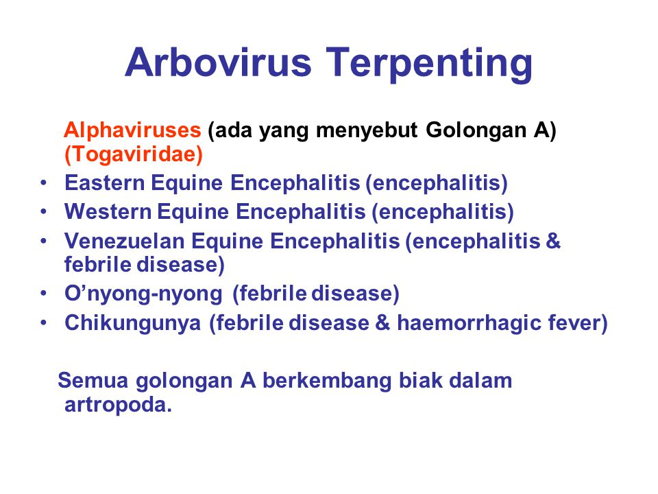 Arbovirus terpenting (lanjut) Flaviviruses (ada yang menyebut golongan B) (Togaviridae) St Louis Encephalitis (encephalitis) Japanese B Encephalitis (encephalitis) Murray Valley Encephalitis (encephalitis) Tick-borne Encephalitis (encephalitis) Louping Ill (encephalitis, meningitis) Yellow fever (haemorrhagic fever) Kyasanur-forest fever (haemorrhagic fever) Dengue (febrile disease; haemorrhagic fever) Tidak semua Golongan B berkembang biak dalam artropoda.