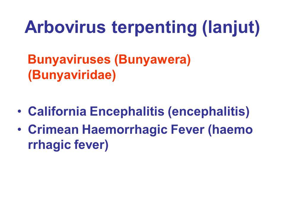 Arbovirus terpenting (lanjut) Orbivirus (Reoviridae) Colorado Tick Fever (febrile disease) (belum dikenal penyakit ini pada manusia) Chenuda virus (encephalitis ringan)