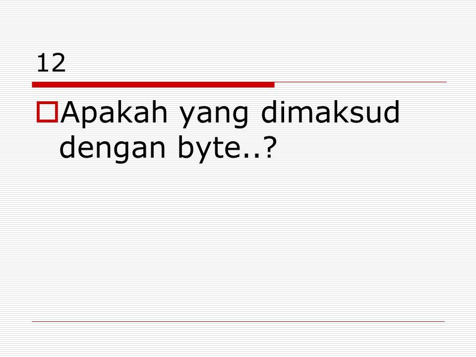 12  Apakah yang dimaksud dengan byte..?