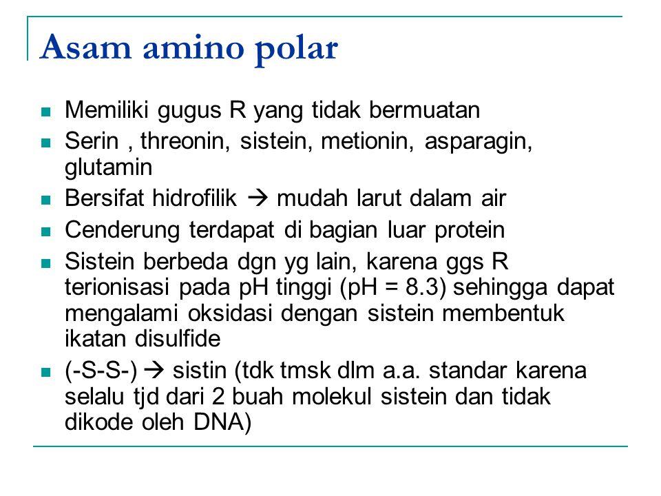 Asam amino polar Memiliki gugus R yang tidak bermuatan Serin, threonin, sistein, metionin, asparagin, glutamin Bersifat hidrofilik  mudah larut dalam