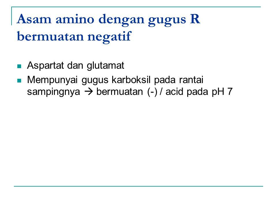 Asam amino dengan gugus R bermuatan negatif Aspartat dan glutamat Mempunyai gugus karboksil pada rantai sampingnya  bermuatan (-) / acid pada pH 7