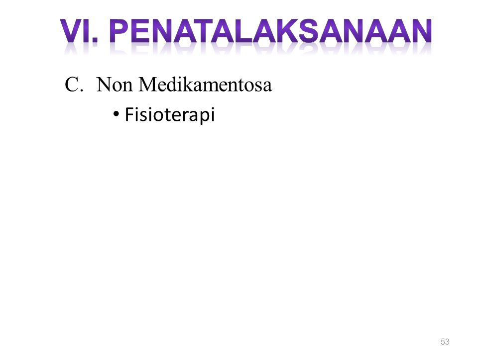 53 C.Non Medikamentosa Fisioterapi
