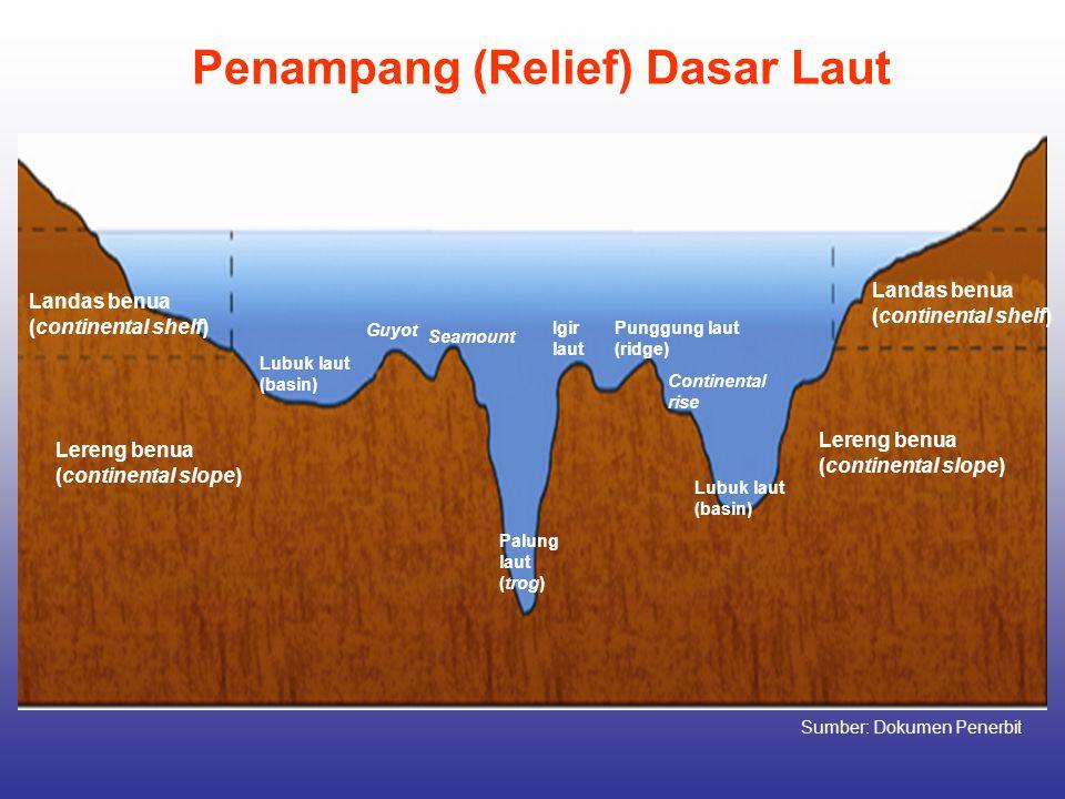Penampang (Relief) Dasar Laut Landas benua (continental shelf) Lereng benua (continental slope) Landas benua (continental shelf) Lereng benua (contine
