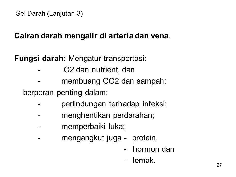 27 Sel Darah (Lanjutan-3) Cairan darah mengalir di arteria dan vena. Fungsi darah: Mengatur transportasi: - O2 dan nutrient, dan -membuang CO2 dan sam