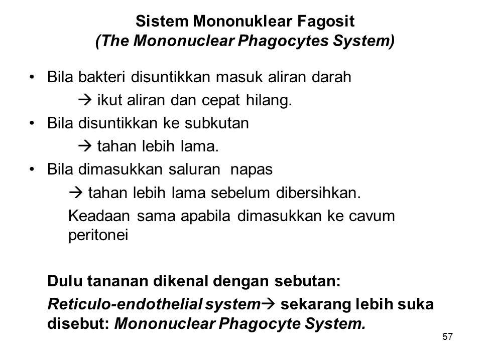 57 Sistem Mononuklear Fagosit (The Mononuclear Phagocytes System) Bila bakteri disuntikkan masuk aliran darah  ikut aliran dan cepat hilang. Bila dis