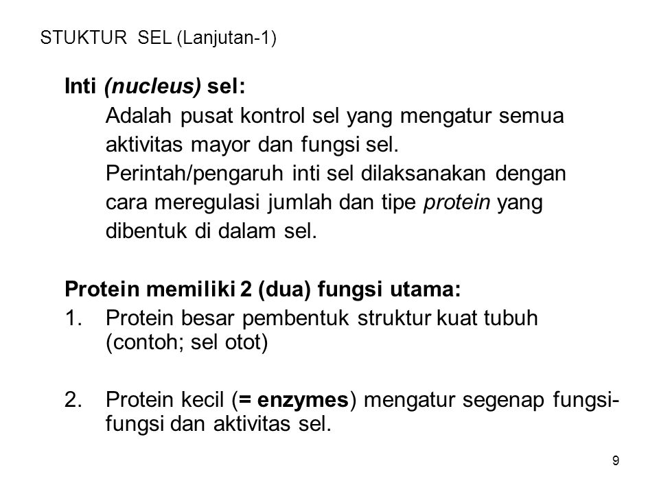 30 Eritrosit (lanjutan -2) Setiap sel eritriosit mengandung jumlah besar hemoglobin, suatu protein yang mengandung iron (Fe).