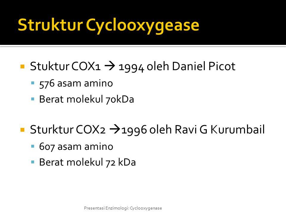  Stuktur COX1  1994 oleh Daniel Picot  576 asam amino  Berat molekul 70kDa  Sturktur COX2  1996 oleh Ravi G Kurumbail  607 asam amino  Berat m