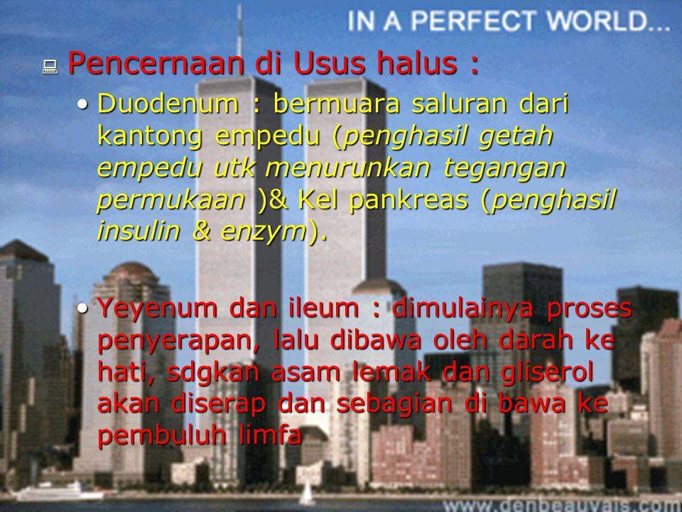  Pencernaan di Usus halus : Duodenum : bermuara saluran dari kantong empedu (penghasil getah empedu utk menurunkan tegangan permukaan )& Kel pankreas (penghasil insulin & enzym).Duodenum : bermuara saluran dari kantong empedu (penghasil getah empedu utk menurunkan tegangan permukaan )& Kel pankreas (penghasil insulin & enzym).