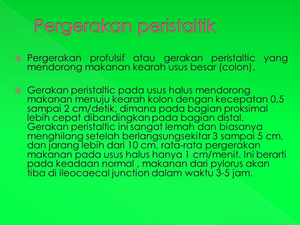  Pergerakan profulsif atau gerakan peristaltic yang mendorong makanan kearah usus besar (colon).  Gerakan peristaltic pada usus halus mendorong maka