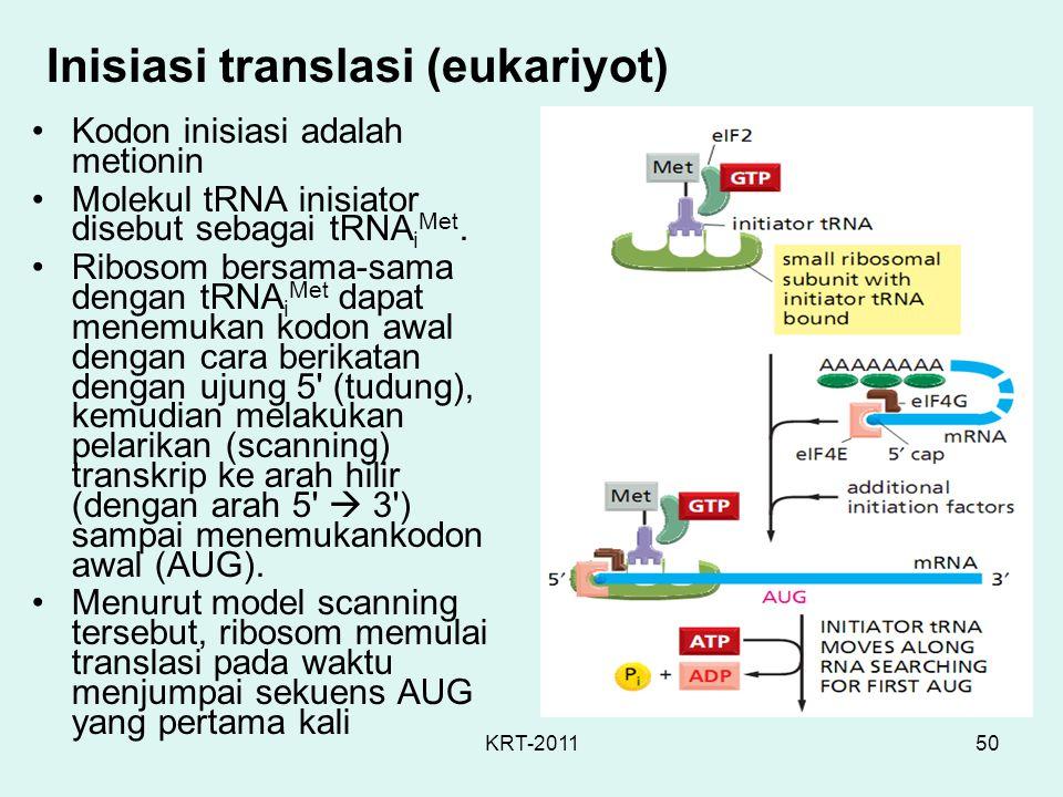 KRT-201150 Inisiasi translasi (eukariyot) Kodon inisiasi adalah metionin Molekul tRNA inisiator disebut sebagai tRNA i Met. Ribosom bersama-sama denga