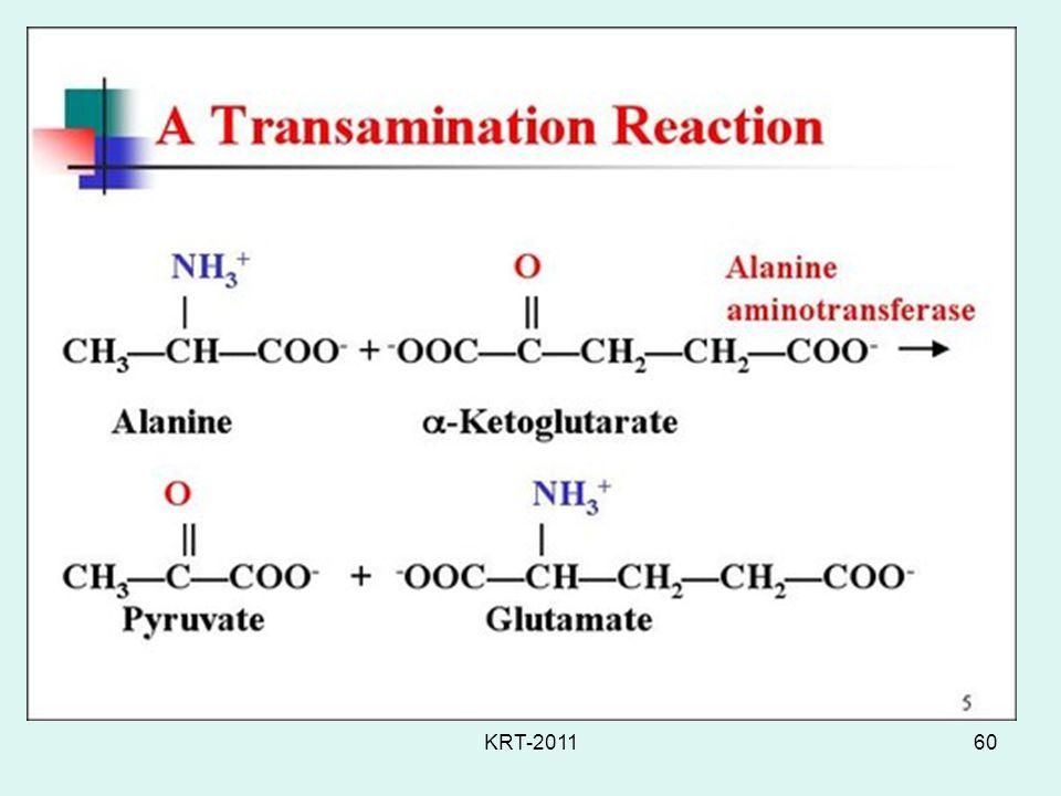 KRT-201160 Transamination