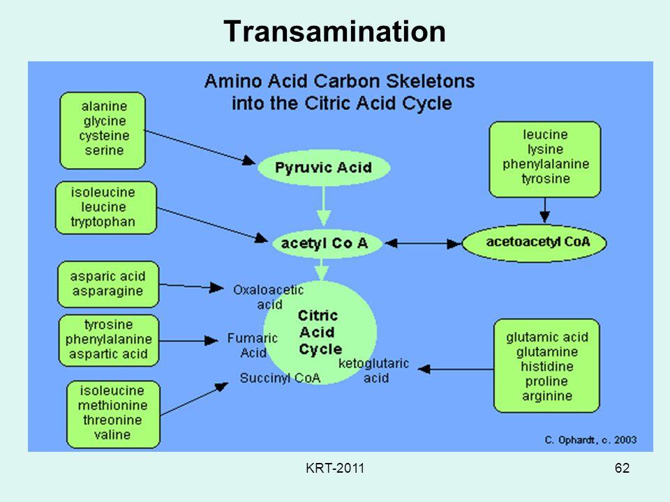 KRT-201162 Transamination