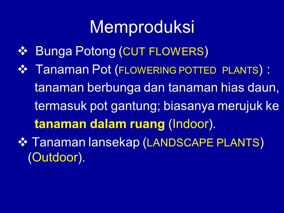 Memproduksi  Bunga Potong ( CUT FLOWERS )  Tanaman Pot ( FLOWERING POTTED PLANTS ) : tanaman berbunga dan tanaman hias daun, termasuk pot gantung; b