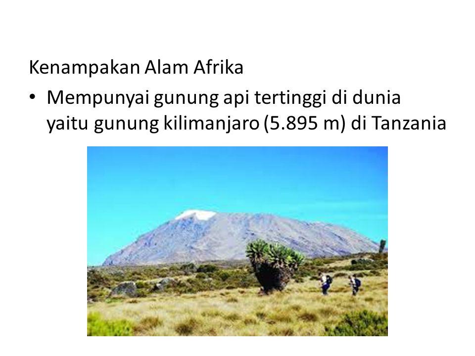 Kenampakan Alam Afrika Mempunyai gunung api tertinggi di dunia yaitu gunung kilimanjaro (5.895 m) di Tanzania