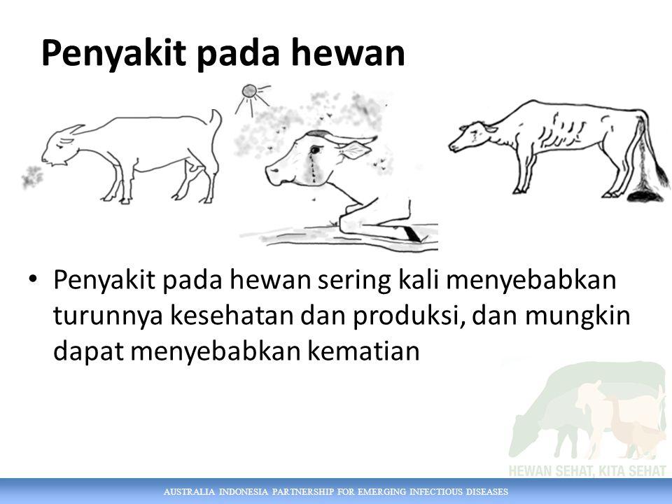 AUSTRALIA INDONESIA PARTNERSHIP FOR EMERGING INFECTIOUS DISEASES Penyakit pada hewan Penyakit pada hewan sering kali menyebabkan turunnya kesehatan dan produksi, dan mungkin dapat menyebabkan kematian