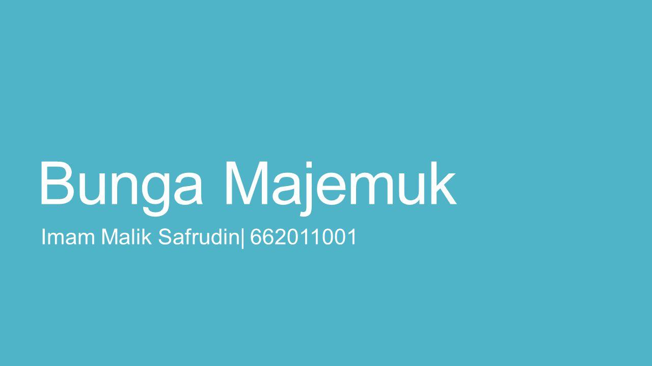Bunga Majemuk Imam Malik Safrudin| 662011001