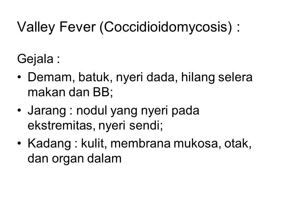 Valley Fever (Coccidioidomycosis) : Gejala : Demam, batuk, nyeri dada, hilang selera makan dan BB; Jarang : nodul yang nyeri pada ekstremitas, nyeri s