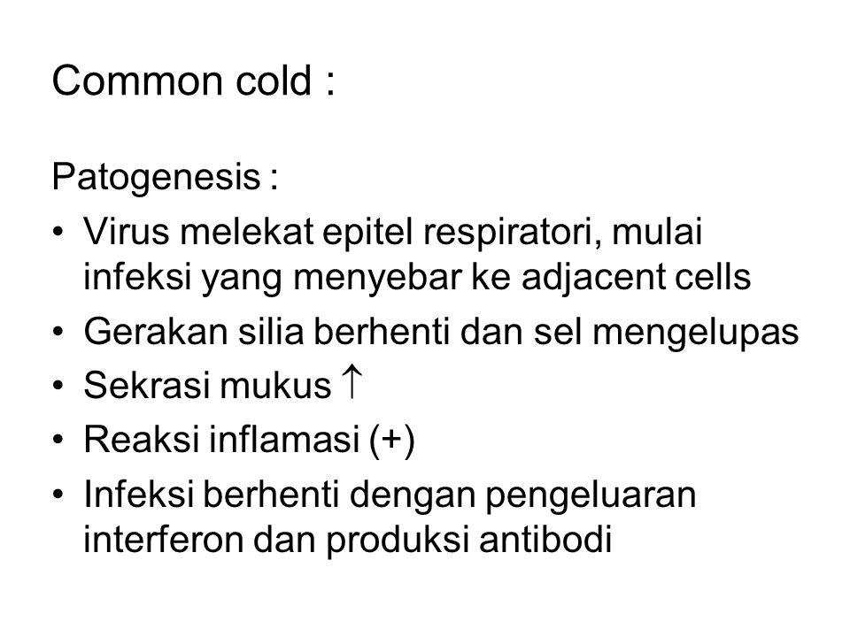 Common cold : Patogenesis : Virus melekat epitel respiratori, mulai infeksi yang menyebar ke adjacent cells Gerakan silia berhenti dan sel mengelupas