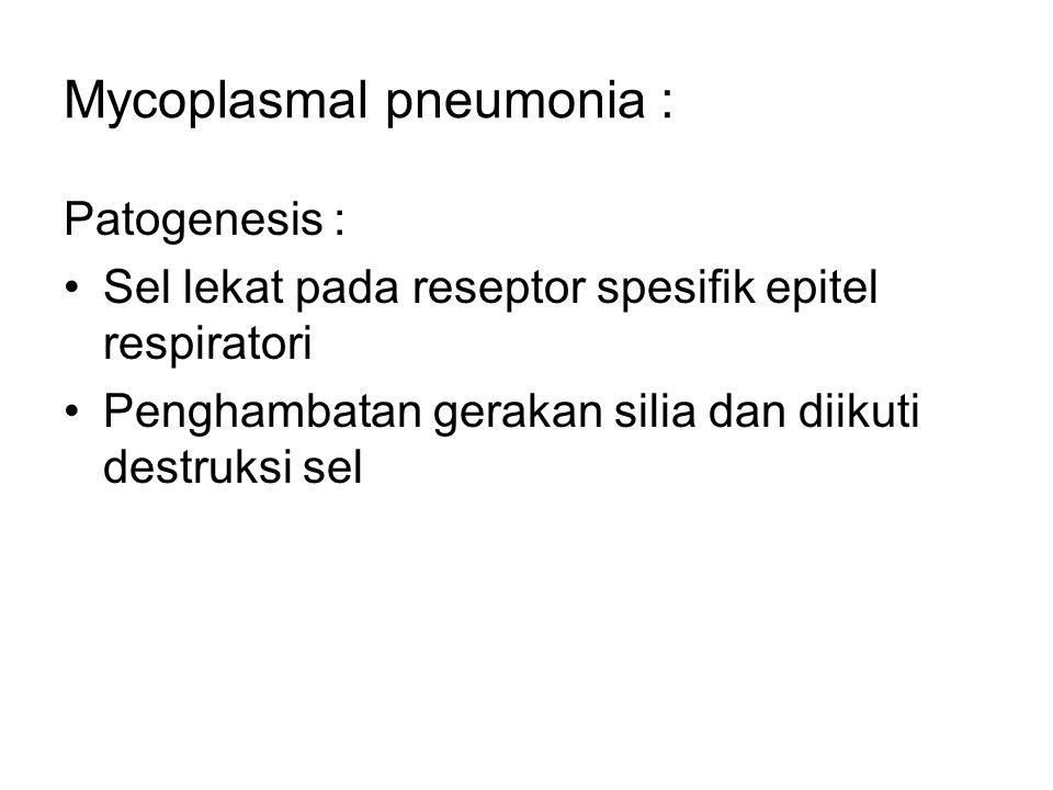 Mycoplasmal pneumonia : Patogenesis : Sel lekat pada reseptor spesifik epitel respiratori Penghambatan gerakan silia dan diikuti destruksi sel