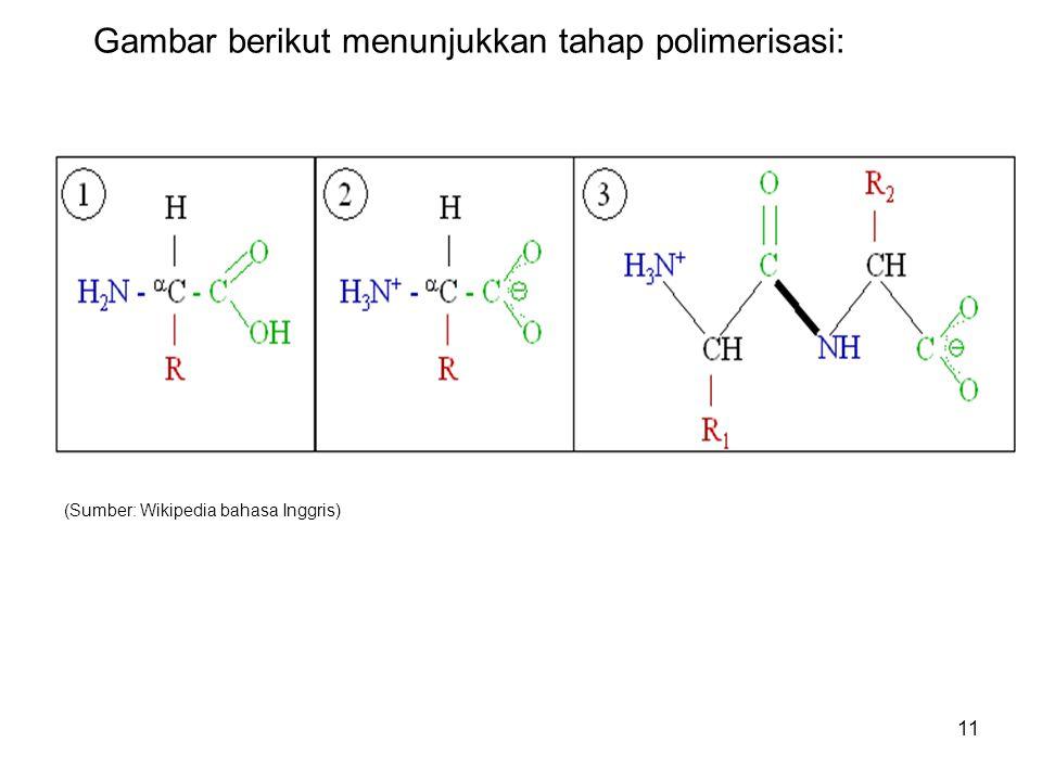 11 Gambar berikut menunjukkan tahap polimerisasi: (Sumber: Wikipedia bahasa Inggris)
