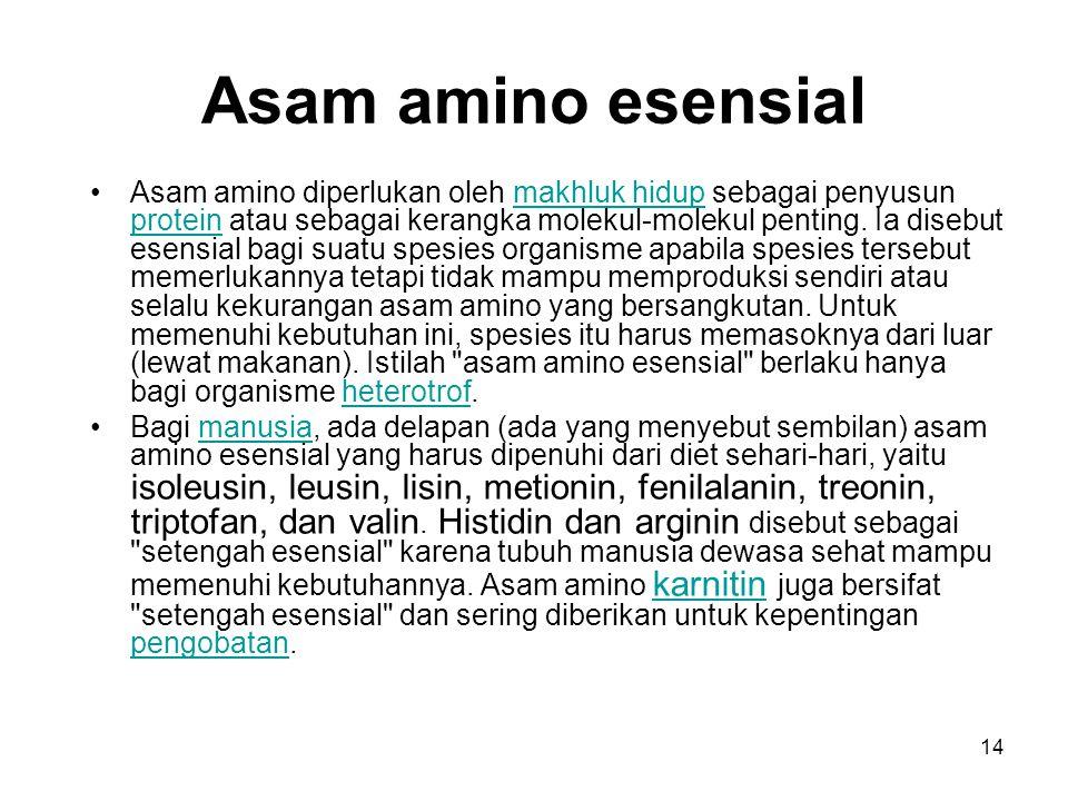 14 Asam amino esensial Asam amino diperlukan oleh makhluk hidup sebagai penyusun protein atau sebagai kerangka molekul-molekul penting. Ia disebut ese