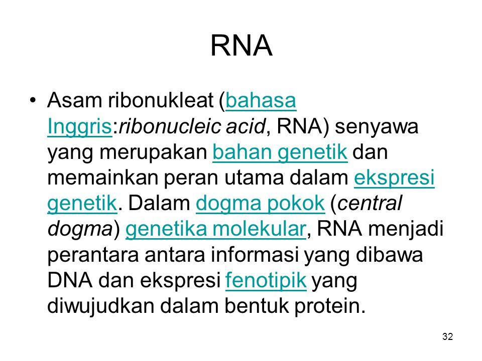 32 RNA Asam ribonukleat (bahasa Inggris:ribonucleic acid, RNA) senyawa yang merupakan bahan genetik dan memainkan peran utama dalam ekspresi genetik.