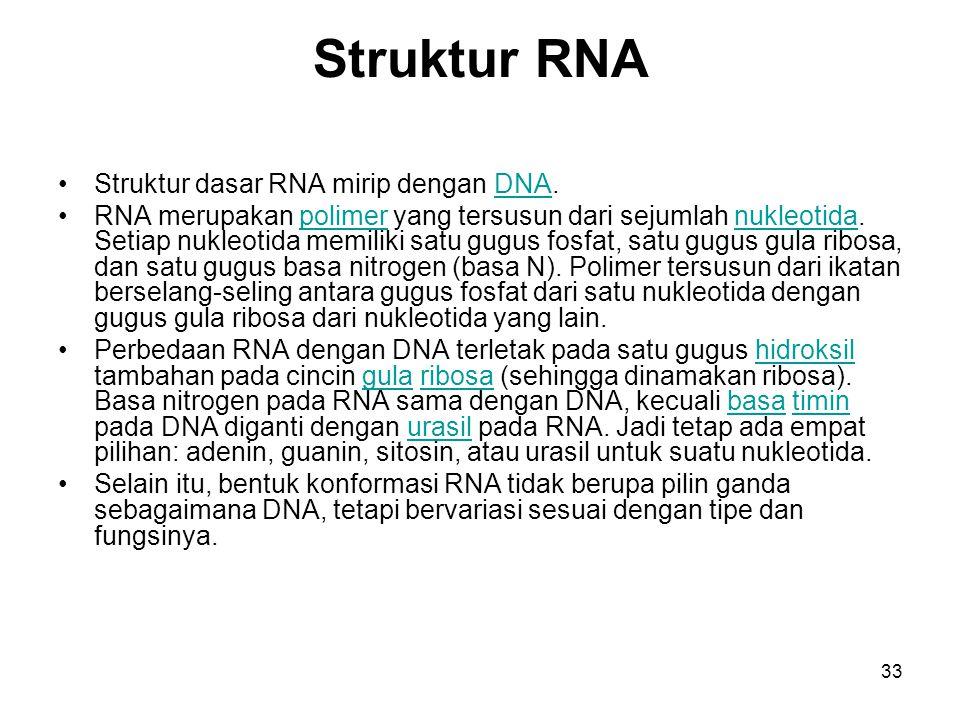 33 Struktur RNA Struktur dasar RNA mirip dengan DNA.DNA RNA merupakan polimer yang tersusun dari sejumlah nukleotida. Setiap nukleotida memiliki satu