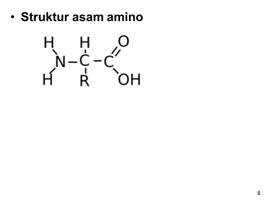 9 Struktur asam amino secara umum adalah satu atom C yang mengikat empat gugus: gugus amina (NH2), gugus karboksil (COOH), atom hidrogen (H), dan satu gugus sisa (R, dari residue) atau disebut juga gugus atau rantai samping yang membedakan satu asam amino dengan asam amino lainnya.aminakarboksilhidrogen Atom C pusat tersebut dinamai atom Cα ( C- alfa ) sesuai dengan penamaan senyawa bergugus karboksil, yaitu atom C yang berikatan langsung dengan gugus karboksil.