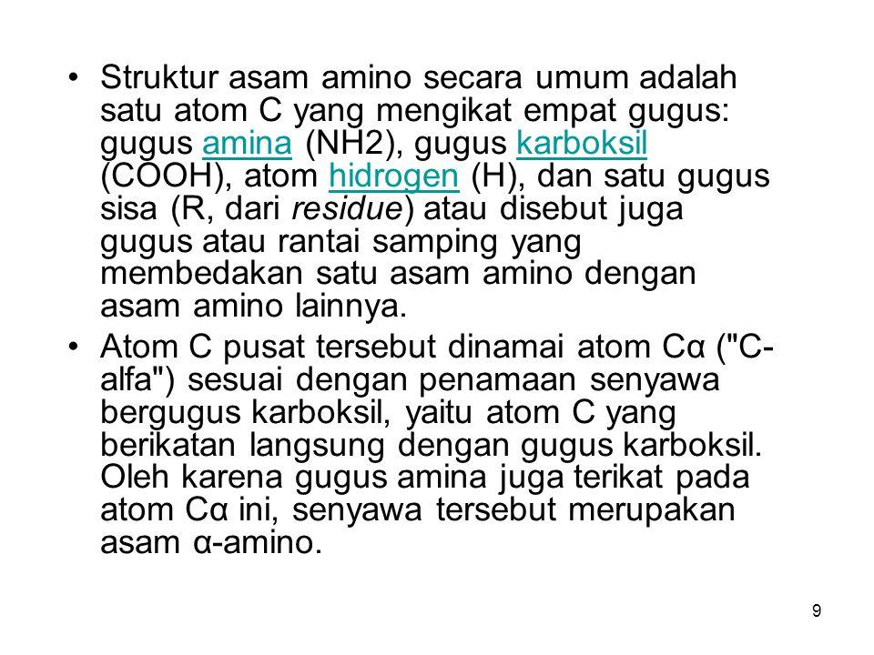 9 Struktur asam amino secara umum adalah satu atom C yang mengikat empat gugus: gugus amina (NH2), gugus karboksil (COOH), atom hidrogen (H), dan satu