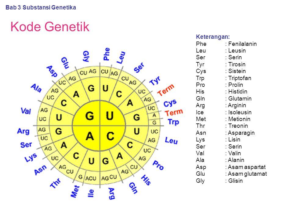 Kode Genetik Bab 3 Substansi Genetika Keterangan: Phe: Fenilalanin Leu: Leusin Ser: Serin Tyr: Tirosin Cys: Sistein Trp: Triptofan Pro: Prolin His: Hi