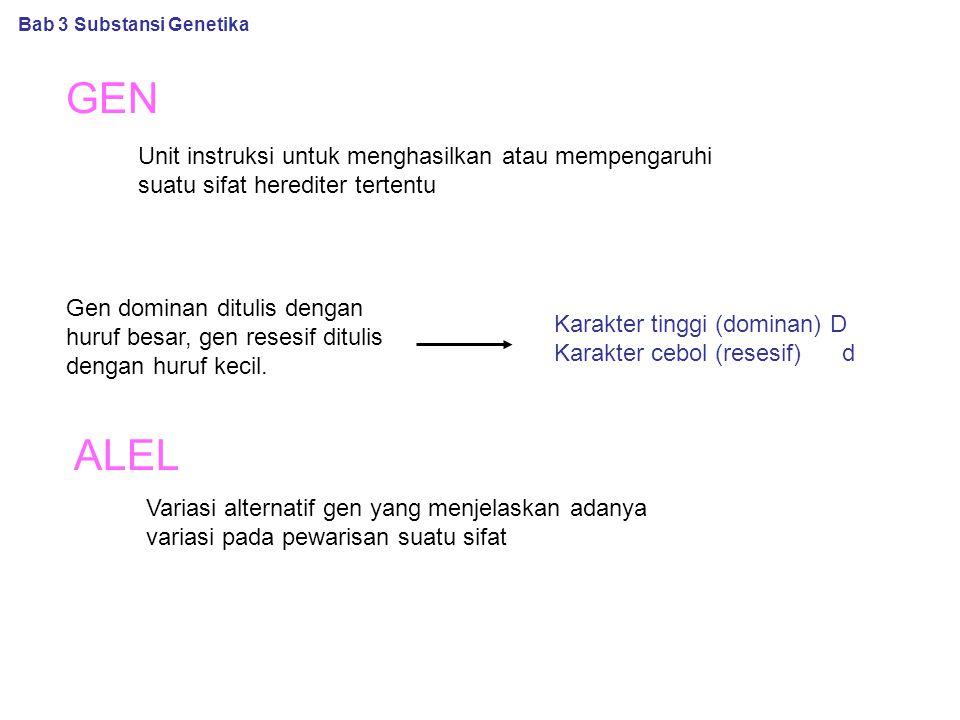 GEN Unit instruksi untuk menghasilkan atau mempengaruhi suatu sifat herediter tertentu Gen dominan ditulis dengan huruf besar, gen resesif ditulis dengan huruf kecil.