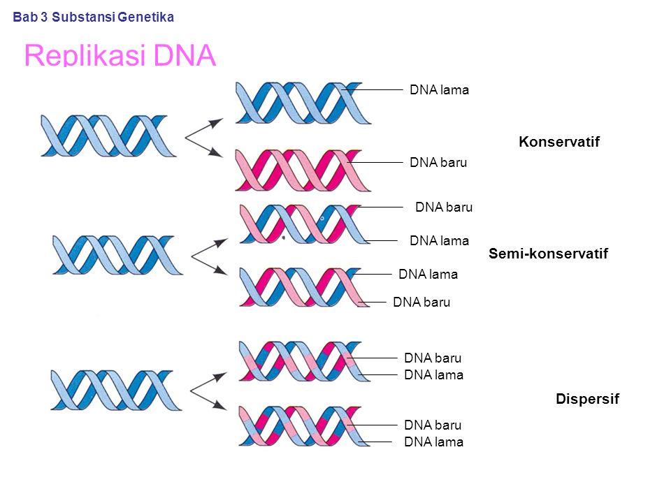 Replikasi DNA Konservatif Semi-konservatif Dispersif Bab 3 Substansi Genetika DNA baru DNA lama DNA baru DNA lama
