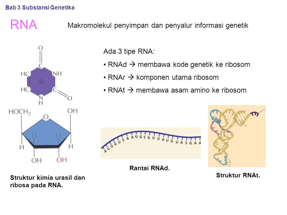RNA Struktur kimia urasil dan ribosa pada RNA. Struktur RNAt. Bab 3 Substansi Genetika Makromolekul penyimpan dan penyalur informasi genetik Ada 3 tip