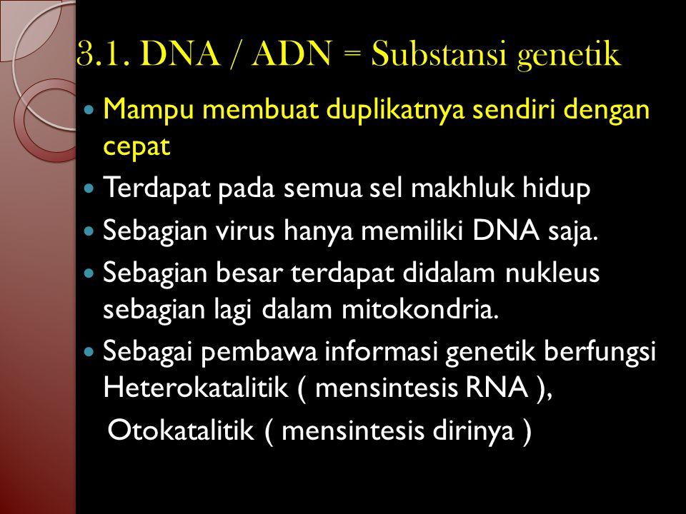 Struktur Nukleoprotein Protein Asam Nukleat Nukleotida - nukleotida Nukleosida + Asam posfat Basa nitrogen + Gula pentosa Purin Pirimidin Ribosa Deoks