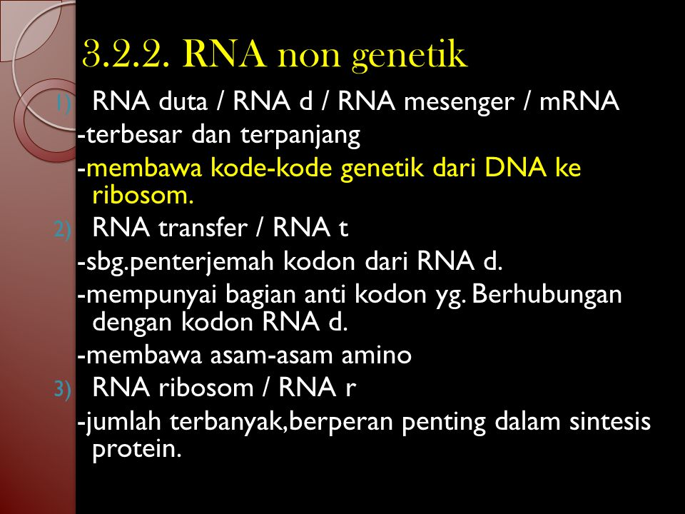 3.2. RNA / ARN Model berbentuk pita tunggal tidak terpilin. Basa purin : adenin dan guanin Basa pirimidin : sitosin dan urasil Macam-macam RNA : 1. RN
