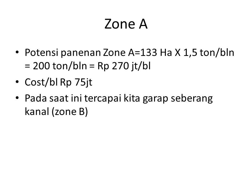 Zone A Potensi panenan Zone A=133 Ha X 1,5 ton/bln = 200 ton/bln = Rp 270 jt/bl Cost/bl Rp 75jt Pada saat ini tercapai kita garap seberang kanal (zone B)