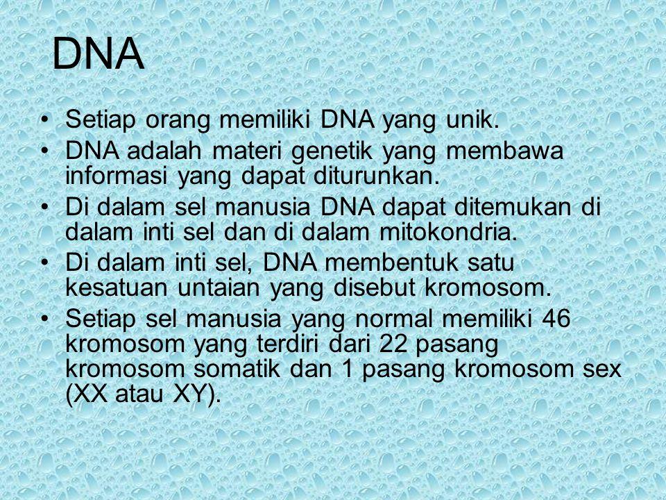 PENGERTIAN KROMOSOM GEN DNA DAN RNA REPLIKASI DNA PERBEDAAN SINTESIS EVALUASI GEN Struktur DNA. Susunan basa nitrogen pada DNA. Gen merupakan sepangka