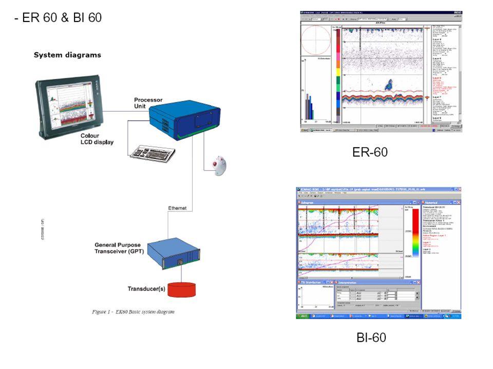 250.000 ton, echogram: panjang 3,5 nm, tebal 500m 5m 25m