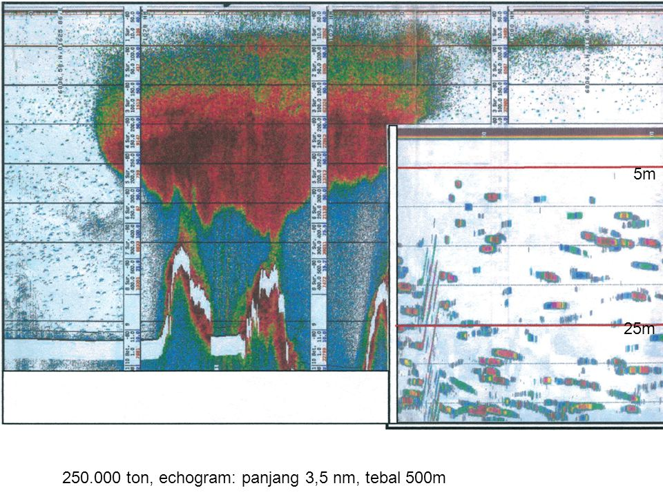 250.000 ton, echogram: panjang 3,5 nm, tebal 500m 5m 25m