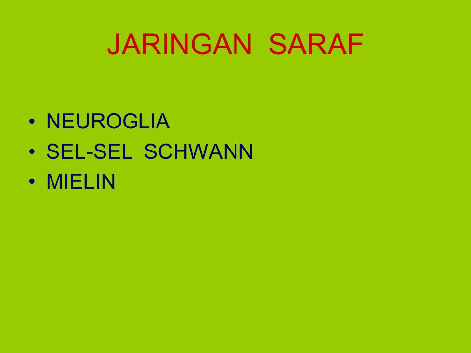 JARINGAN SARAF NEUROGLIA SEL-SEL SCHWANN MIELIN
