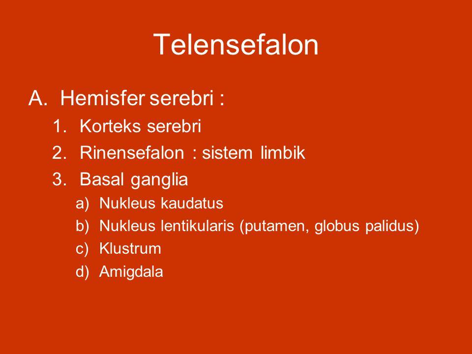 Telensefalon A.Hemisfer serebri : 1.Korteks serebri 2.Rinensefalon : sistem limbik 3.Basal ganglia a)Nukleus kaudatus b)Nukleus lentikularis (putamen,