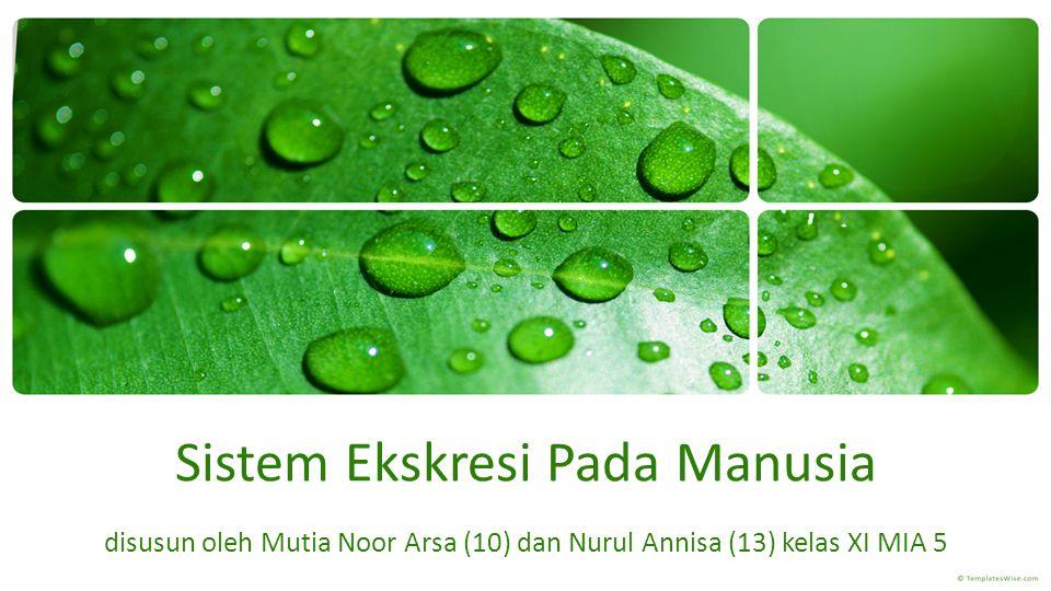 Sistem Ekskresi Pada Manusia disusun oleh Mutia Noor Arsa (10) dan Nurul Annisa (13) kelas XI MIA 5