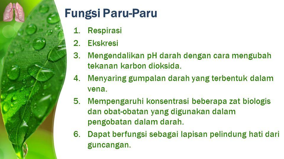 1.Respirasi 2.Ekskresi 3.Mengendalikan pH darah dengan cara mengubah tekanan karbon dioksida. 4.Menyaring gumpalan darah yang terbentuk dalam vena. 5.