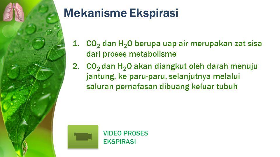 Mekanisme Ekspirasi 1.CO 2 dan H 2 O berupa uap air merupakan zat sisa dari proses metabolisme 2.CO 2 dan H 2 O akan diangkut oleh darah menuju jantun