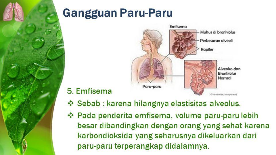 Gangguan Paru-Paru 5. Emfisema  Sebab : karena hilangnya elastisitas alveolus.  Pada penderita emfisema, volume paru-paru lebih besar dibandingkan d