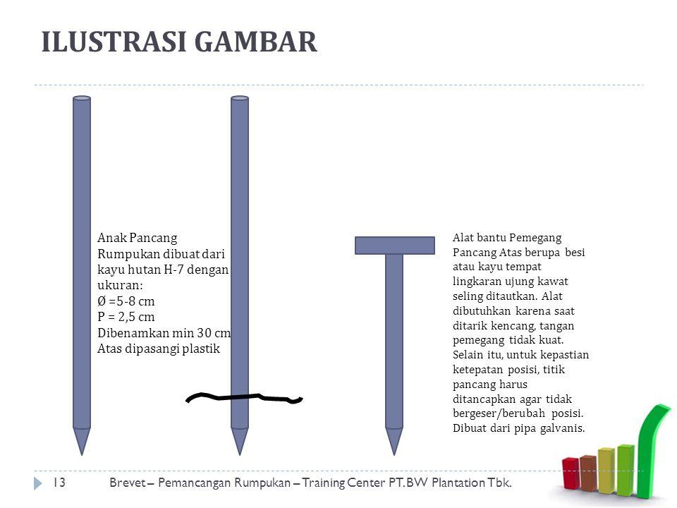 ILUSTRASI GAMBAR 13Brevet – Pemancangan Rumpukan – Training Center PT.