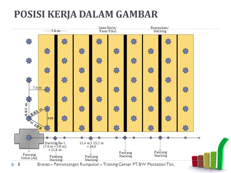 POSISI KERJA DALAM GAMBAR 8Brevet – Pemancangan Rumpukan – Training Center PT. BW Plantation Tbk. 7,6 m 7.6 m Pancang Induk (As) 8.83 m Jalan Kerja/ P